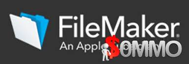 FileMaker Pro Advanced 19.1.3.315 Crack
